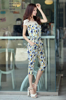 2014     vintage  pants   fathion   women  Han edition dress spring new morality show thin chiffon jum  sports clothing