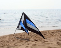 New blue 250CM Dual lines ballet team kite/with flying lines&wristrap/RTF