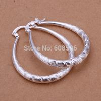 Free Shipping Wholesale fashion jewelry Earrings ,925 Sterling silver Earrings .  QE295