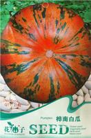 1 Original Pack, 30 seeds / pack, Edible Large Orange Pumpkin with Green Stripe Seeds #B104