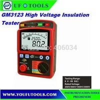 BENETECH GM3123 Digital Insulation Resistance Tester 2500V  100Gohm