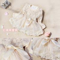 2014 Spring autumn new Korean long-sleeved cotton dress baby girls princess lace dress