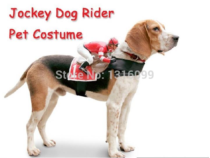 Rider Pet Clothes Costume