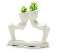 White Man Grass Planting Mini Grass Potted Creative Office Miniature Landscape Plants Fashion Seeds Indoor Plants Office Bonsai