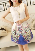 2014 new summer dress cute O-neck sleeveless printed render vest dress tropical printing bohemian style dress