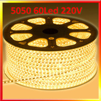 High voltage 220V IP66 waterproof 5050 60leds/m strip light warm white 600led/10m