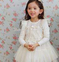 2014 Girls new lace gauze dress , little girls dresses , 5pcs/lot  FCM05
