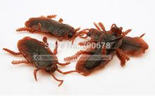 Free shipping 50pcs/lot roaches blackbeetle halloween decoration joking toy props 8*5cm(China (Mainland))