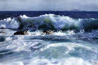handmade seascape oil painting on canvans realistic art painting  SEA1018 60x90cm