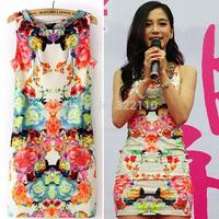 2014 Summer New Fashion O-Neck Novelty Dresses Desigual Dress Party Dress Printed Floral Dress Sexy Slim Casual Women Dress