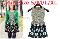 New Women Summer Dresses 2014 Fashion Vintage Floral Print Mimi Casual Slim Sleeveless Chiffon Vest Princess Dress Free Shipping