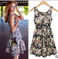 New 2014 Casual Summer women print dresses Flowers blue vintage plus size tank dress Chiffon roupas femininas vestido festa  XXL