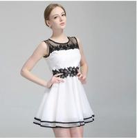 Fashion Summer Chiffon Dress 2014 New Women Lace Party Dresses Plus Size Vestidos Free Shipping#8895