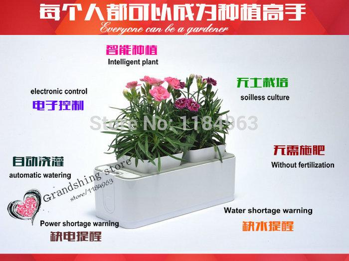 Green Smart Pots Flower Pot/smart Bonsai