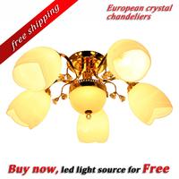 High quality white flower shape European modern chandeliers  6pcs base type lighting FF65F60-5