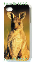2014 fashion! Unique Newest Designs! The kangaroo Hard cover cases for iPhone5 5s 1PCS + free shipping