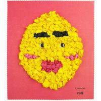 Fruit paper painting diy paper handmade paper sticker yakuchinone 0.03 materials