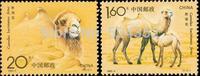 Wild Camels 2pcs,1993   znaczki pocztowe About Aniaml  ,  100% New For Collecing China Postage Stamps
