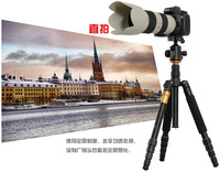QZSD-02 Professional Photographic Portable Tripod Set For Digital SLR Camera Only 35cm Load Bearing 15Kg  Q666+15