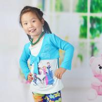 Baby Girl Long Sleeve Frozen T-shirt Baby Spring Autumn Clothing CARTOON tshirts Hoodies 1pc Free Shipping TYT-1439