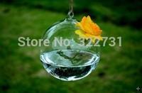 Free Shipping Borosilicate Glass Hanging Vase Air Plant Glass Terrarium