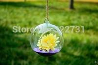 Free Shipping Hanging Transparent Glass Vase Decoration, Air Plant Glass Terrarium for Wedding Decor