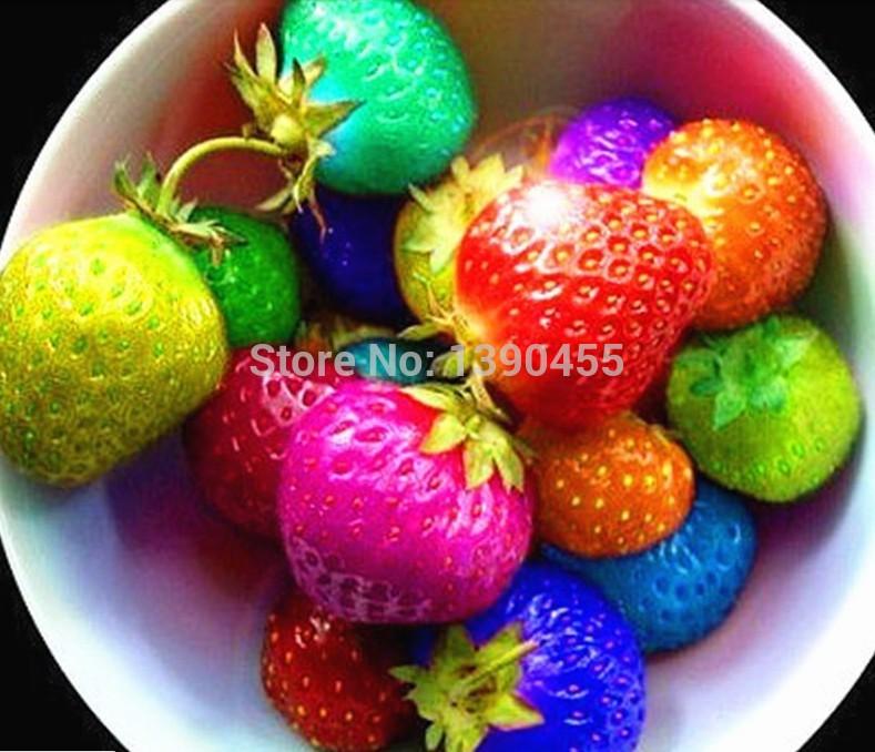 1000 pezzi(24 colori) semi di fragola di frutta fragole di semi di fiori giardino semi giardino interno bonsai vasi da fiori fioriere