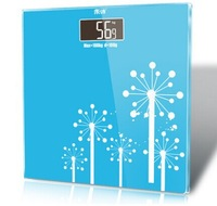 Free Shipping Competitive Price Precision Electronic Health Weighing Scales