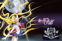 NEW The Sailor Moon Crystal 20th Anniversary Japan Cosplay