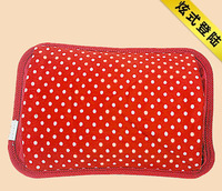 200V~250V NEW COMING PURE DESIGN charging electric hot water bag hot water bottle