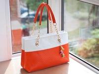 2014 fashion  shoulder princess handbag  +free shipping