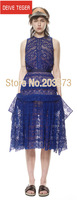 (DEIVE TEGER)blue sexy  lace embroidery ruffles  Women summer  Dress party club dress  DT204