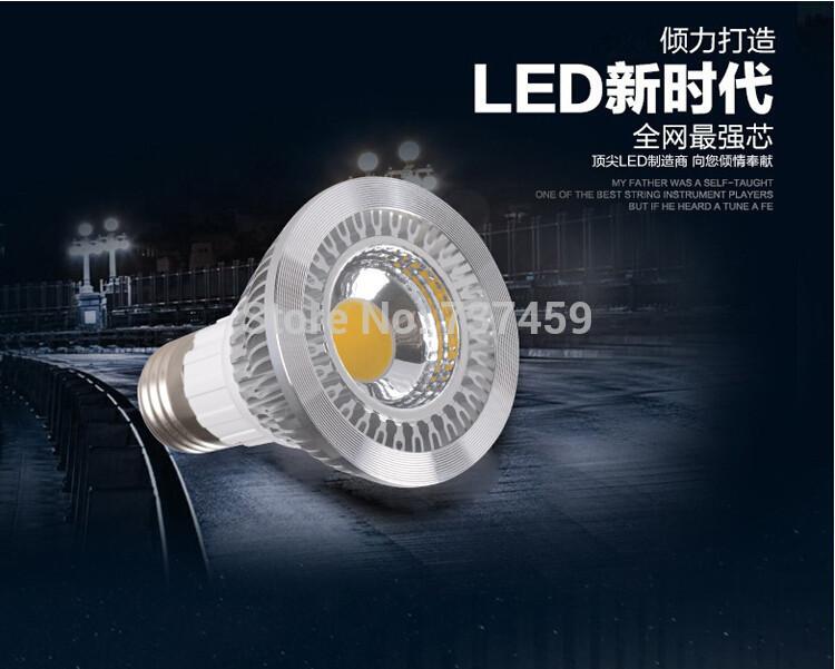 High power COB Diammable Par 20 Led Lamp 10W E27 AC110-245 Led spot Light Spotlight led bulb Par20 LED lamps downlight lighting(China (Mainland))