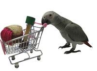 2014 new design Parrot toys Bird Toy Mini Shopping cart  trolley bird training supplies
