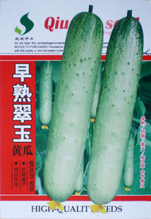 Jade cucumber seeds cucumber seeds early results of more than 10g of fruit and vegetable color package(China (Mainland))