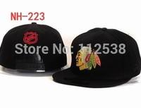 Latest Philadelphia Flyers snapbacks detroit red wings adjustable baseball hats Boston Bruins snapbacks 12pcs/lot free shipping