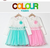 Autumn new hot sale 2014 girls Frozen Anna ans Elsa long sleeves fashion lacec dress free shipping retail