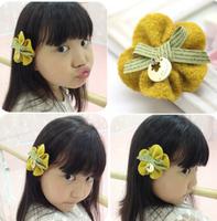 Freeshipping!New Girls/Kids/Infant/   hair clamp/Hairpins/Hair Accessories,JG129