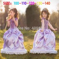 2014 frozen purple noble short sleeve party dresses/tutu children kids costume lace hem princess dress