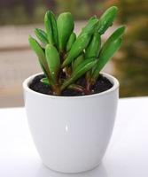 Simulation of artificial flowers bonsai ceramic pot plants at home