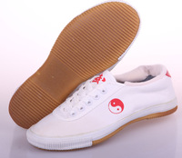 Warrior shoes martial arts shoes professional tai chi sneaker canvas shoes wl-37
