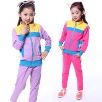 Brand children's clothing sets girls spring 2014 new models sport suit kids zipper sportswear baby clothes sport suit set