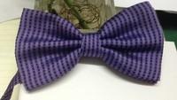 2014  Fashion High Quality Purple Polyster Bow tie