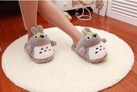 Totoro plush home lady slippers, floor cartoon woman shoes, new warm winter My Neighbor Totoro slippers girl