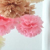 Free Shipping  5 pcs 25cm(10inches) Tissue Paper Pom Poms paper flower ball Wedding, Birthday, Baby shower, Nurseries decoration