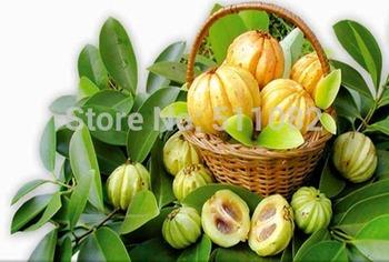 Pure Health Power Trim 4 - Garcinia Cambogia, Green Coffee Bean, Raspberry Ketone &