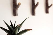 3 Pcs / Apricot ramo de madeira ganchos / roupas / bag cozinha / artesanato / / natural galhos / keys / paste / polido casa / / Feliz(China (Mainland))