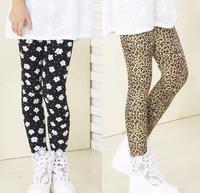 8pcs/lot Baby girls legging kids children shorts girl Leggings 0809 sylvia 39802538938