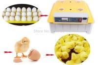 48 Eggs AUTOMATIC EGG INCUBATOR CHICKEN INCUBATOR POULTRY INCUBATORS QUAIL EGG INCUBATOR