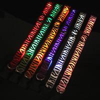 High Quality LED light pet collars dog collar leashTeddy Golden Glow fluorescent collar Pet Collar